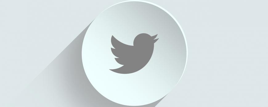 Pourquoi acheter des followers Twitter français ?