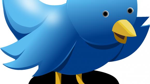 Quels sont les atouts de l'achat de favoris Twitter ?